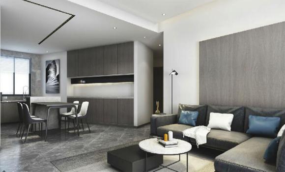理居室内设计:精英男最爱的极简风