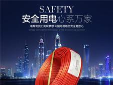 和家盛建材:太阳电线电缆国标新款