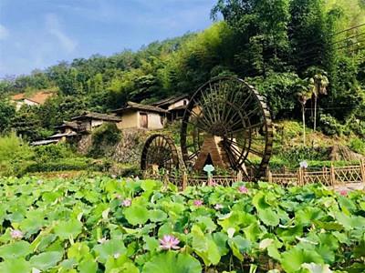 漳州华安这个小村庄要火