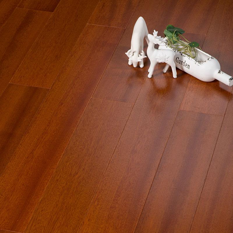 WD9501南洋海棠木